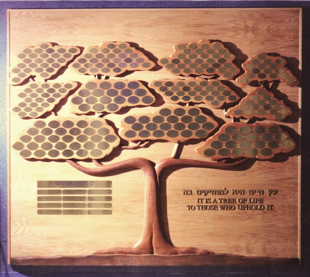 Tree of Life Donor Wall New Bedford MA